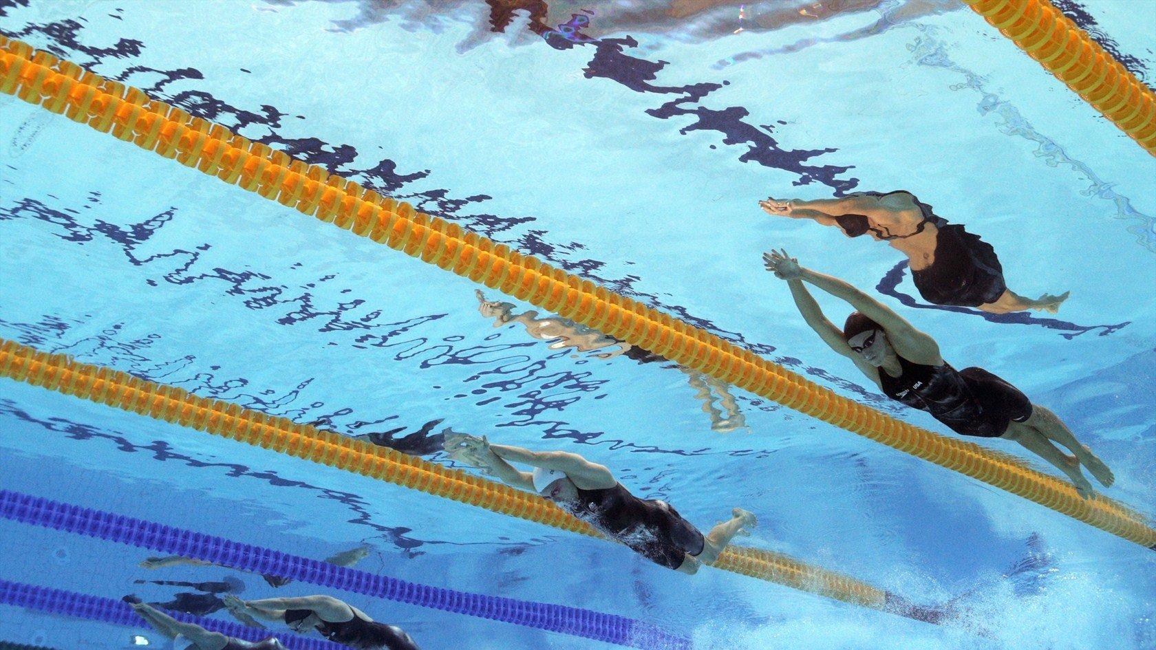 수영 대회